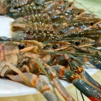 Ah Lau Food King | WhatsApp Image 2021 09 20 at 4.07.07 PM e1632125862653