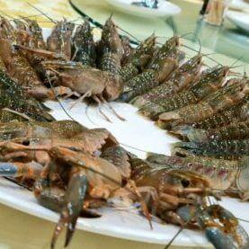 Ah Lau Food King | WhatsApp Image 2021 09 20 at 4.07.09 PM e1632125983682