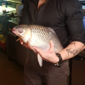 Ah Lau Food King   fish sultan 1